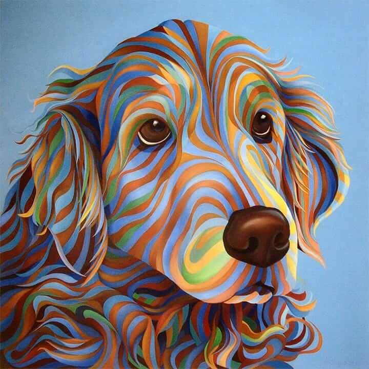 08-Golden-Retriever-Kate-Hoyer-www-designstack-co