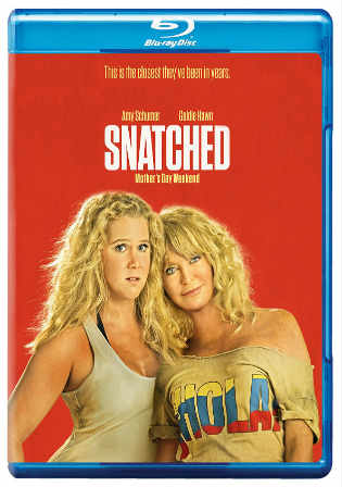 Snatched 2017 BluRay 650MB Hindi Dual Audio ORG 720p Watch Online Full Movie Download bolly4u