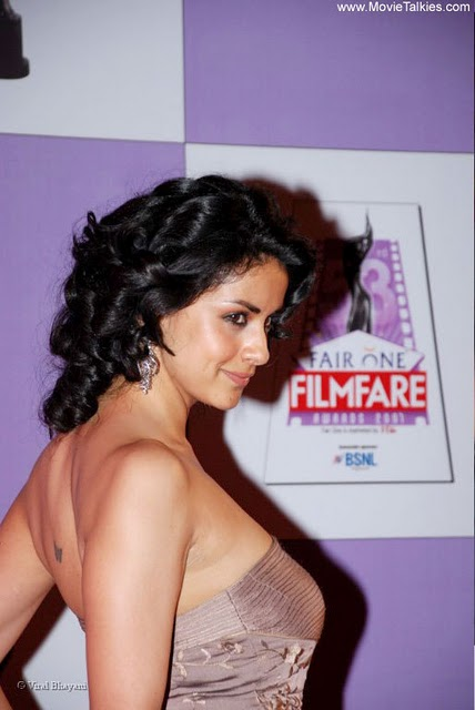 hot celebrities pics bollywood hot actresses gul panag sexy pics,hot photos and hot wallpapers showing her big breasts boobs