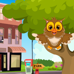 G4K Cute Owl Rescue Game