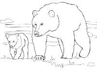 דף צביעה דוב