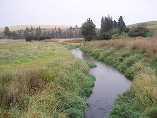 south fork of Palouse River