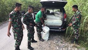 TNI Kompi Senapan D Lokop Tangkap 100 Kilo Ganja Kering di Serba Jadi Aceh Timur