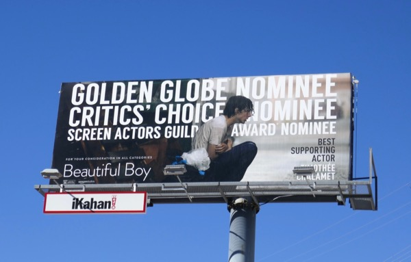 Timothee Chalamet Beautiful Boy Golden Globe nominee billboard