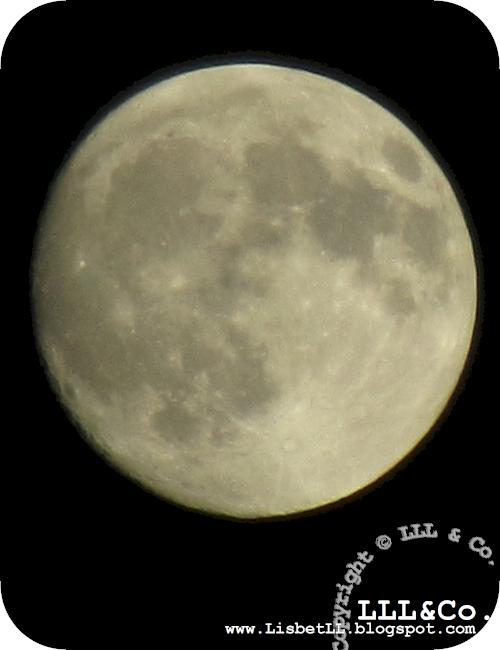 *LLL og Co.*: Sol går ned... og måne står op...!