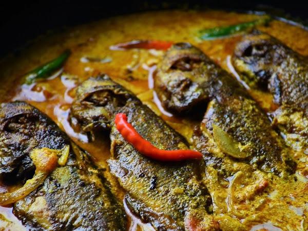 Climbing Perch in Mustard Sauce   Koi Macher Sorshe Jhal Recipe.
