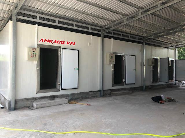 160040070 2519810938327335 921217594959570996 n Lắp đặt, sửa chữa, bảo trì hệ thống kho lạnh, kho đông ở TPHCM