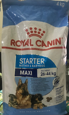 puppy food royal canin maxi