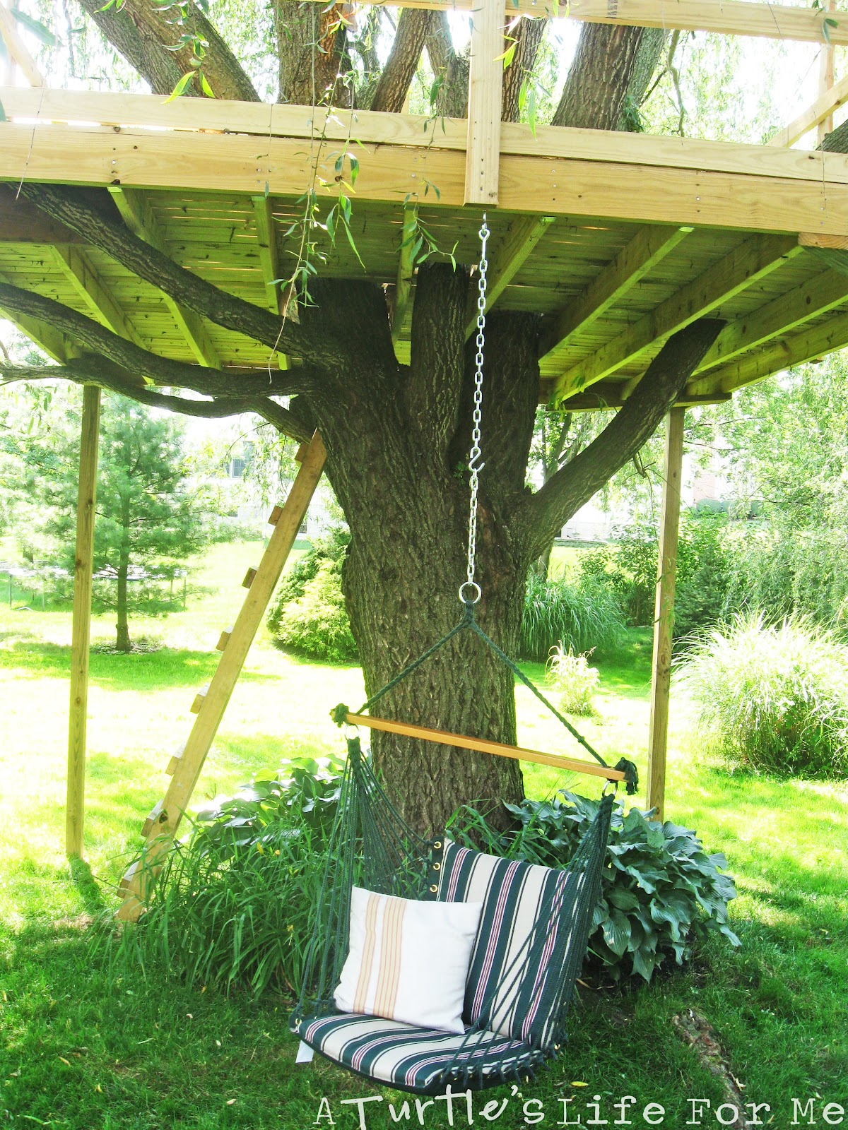Tree Fort With A Swing A Turtle S Life For Me