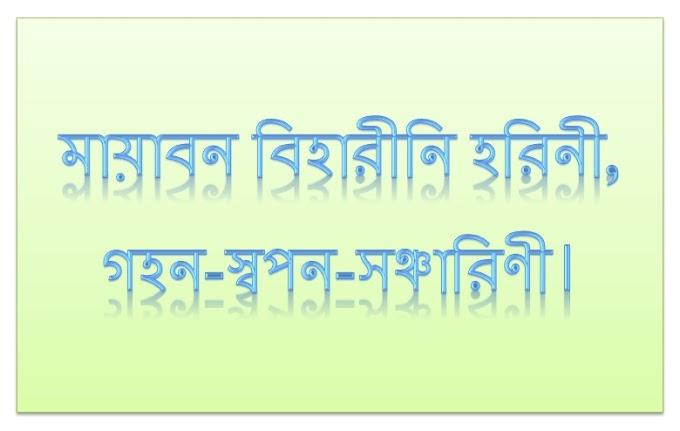 Mayabono Biharini Horini Lyrics (মায়াবন বিহারীনি হরিনী)