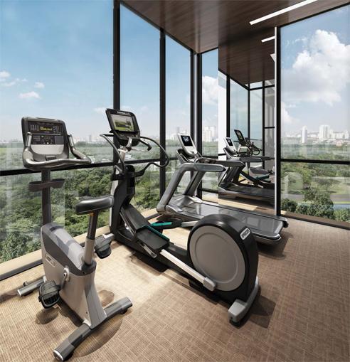 Verticus - Gym