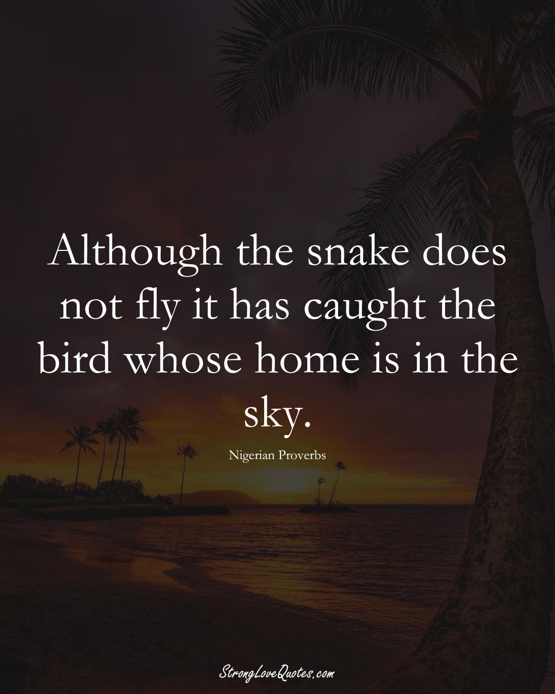 Although the snake does not fly it has caught the bird whose home is in the sky. (Nigerian Sayings);  #AfricanSayings