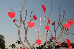 Mohammad Thamrin Keluarkan Surat Larangan Rayakan Valentine Day di Depok