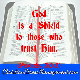 God is a shield to those who trust Him Proverbs 30:5