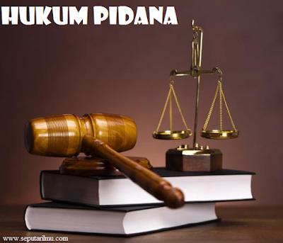 Pengertian, Tujuan, dan Fungsi Hukum Pidana Beserta Contohnya Lengkap