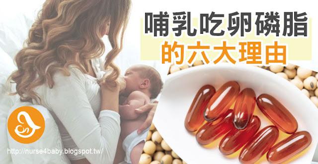 為什麼餵母奶必吃卵磷脂?卵磷脂(Lecithin)是一種常見的膳食保健補充品,卵磷脂的主要成分中,影響孕中及哺乳媽咪最重要的成分就是「磷脂質」,也就是對孕中及哺乳媽咪最有幫助乳化及乳腺通暢奶水的成分,它可降低乳汁黏性,有助於防止塞奶,二來懷孕中增加卵磷脂的攝取,可以促進胎兒中樞神經和腦部的發育,一起來看看卵磷脂對哺乳的好處吧!