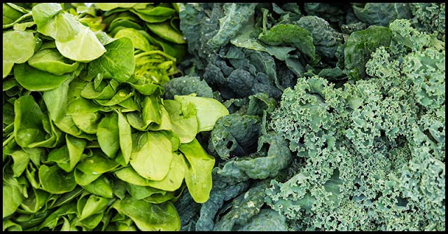 Food Face-Off: Health Benefits of Kale vs. Spinach