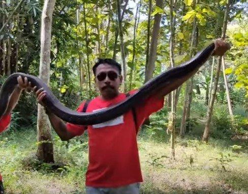 Wanto Goweng, Pria Kebumen yang Dijuluki 'Hokage Reptil'