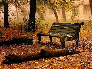 Autumn Fall Nature Wallpaper for Desktop