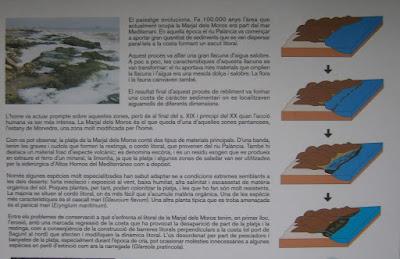 Panel informativo de La Marjal dels Moros, Humedal perteneciente a Puçol y Sagunto, Comunidad Valenciana, España
