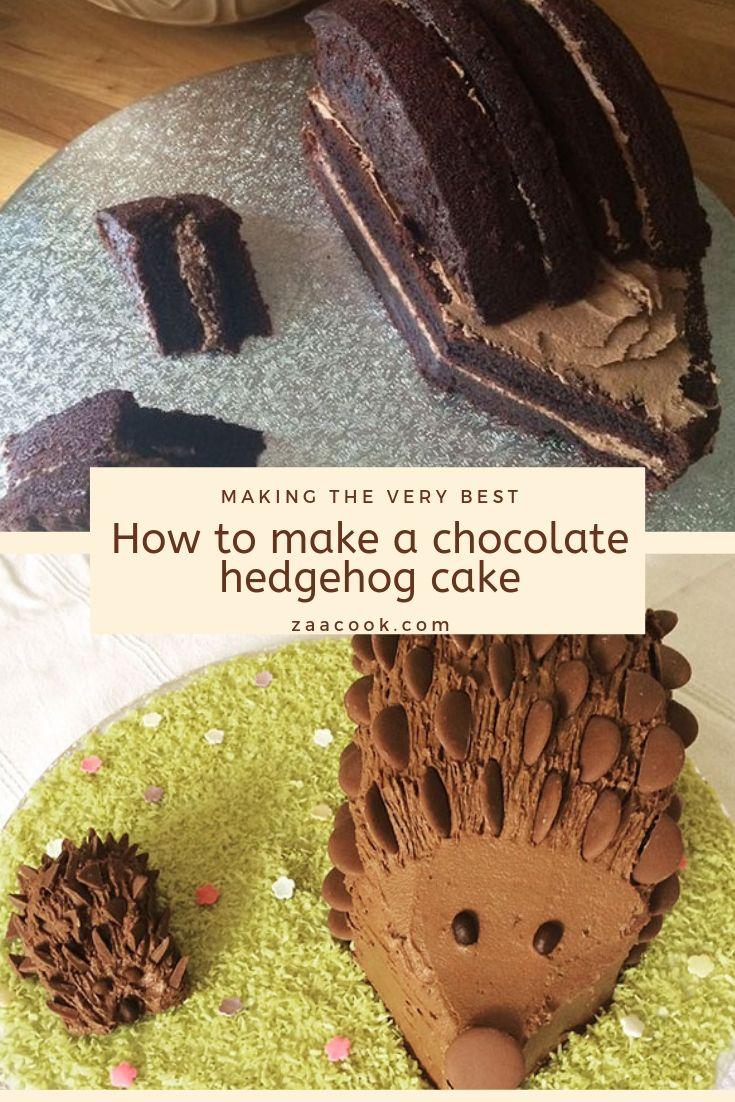 Superb How To Make A Chocolate Hedgehog Cake Best Top Recipe Funny Birthday Cards Online Inifodamsfinfo