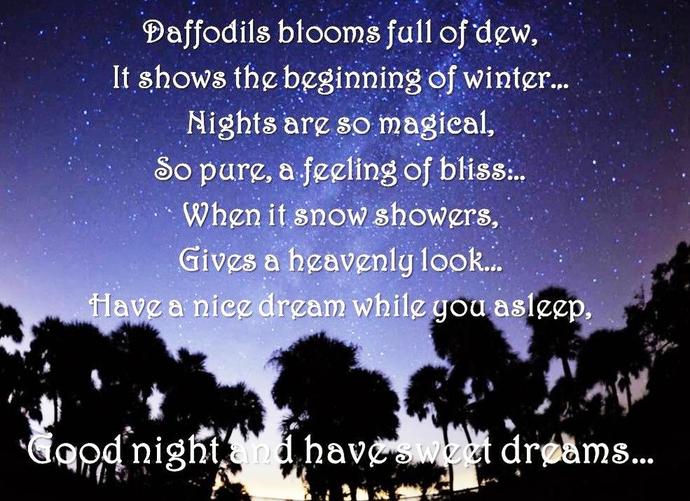 Amazing Good Night Love Quotes Sayings