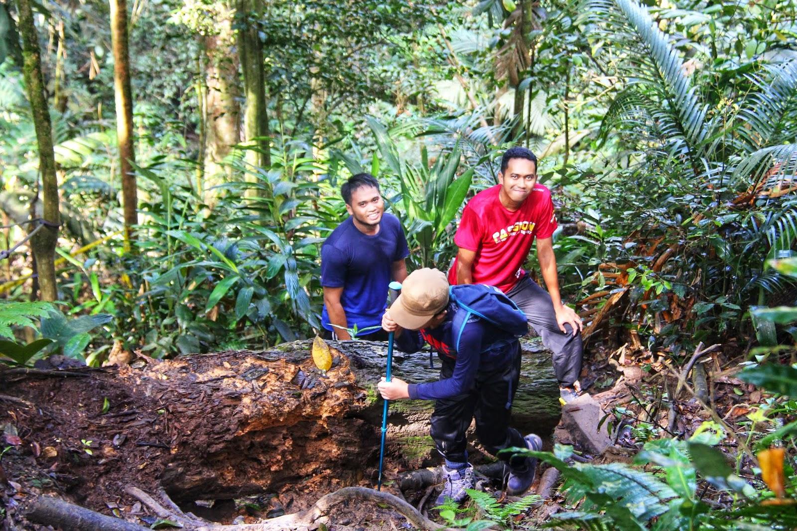 Gunung Telapak Buruk - Crash Site 5
