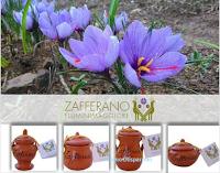 Logo Vinci gratis Ceramiche Zafferano Fluminimaggiore