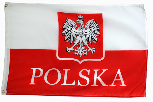 Election Results for European Parliament for Poland - Poles Living in the USA