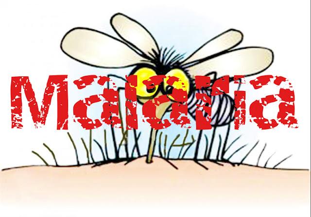 Fight the Malaria Scare