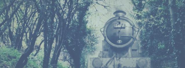 La Zanetti, il treno fantasma sulla Roma-Milano