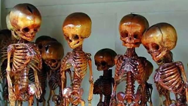 Βρήκαν σκελετούς Χόμπιτ??!!!Αρχαία φυλή μικροσκοπικών ανθρωποειδών ανακαλύφθηκε σε βουνό των ΗΠΑ!!!