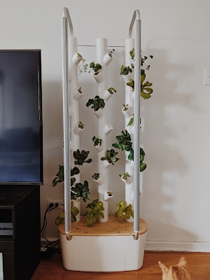 gardyn tech system indoor garden gift guide 2020 sustainability