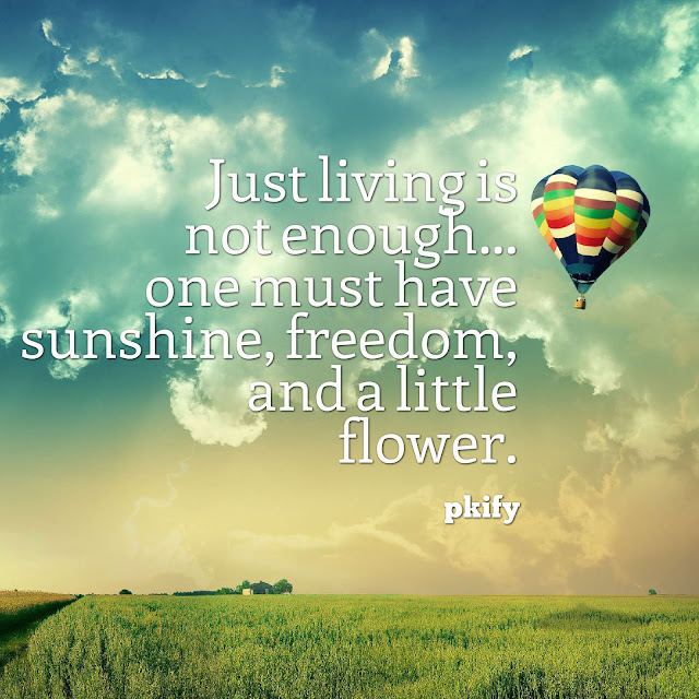 Just Living Is Not Enough One Must Have Sunshine Freedom and a Little Flower Freedom Quotes
