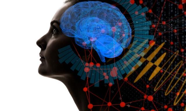 Πόσο ποσοστό του εγκεφάλου μας χρησιμοποιούμε – Ο μύθος του 10% και η αλήθεια