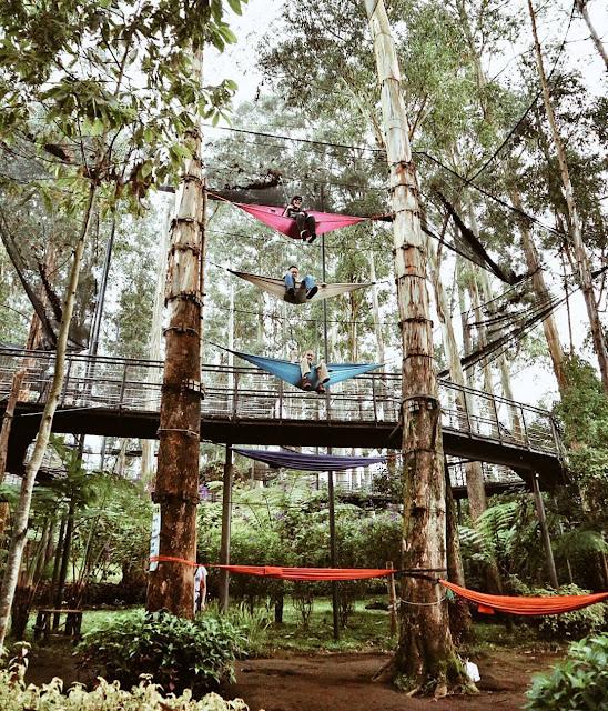 Spot Di Dusun Bambu