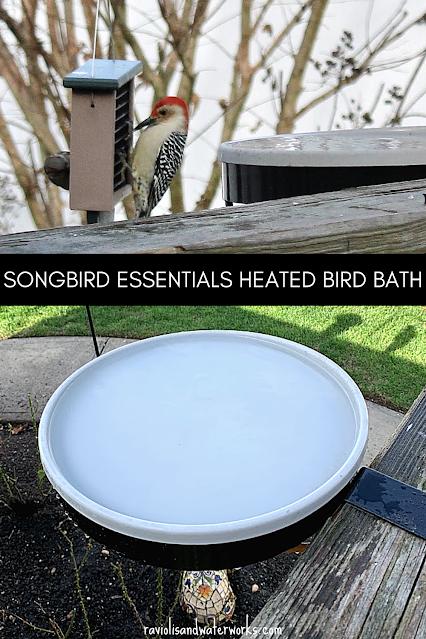 what is the best heated bird bath