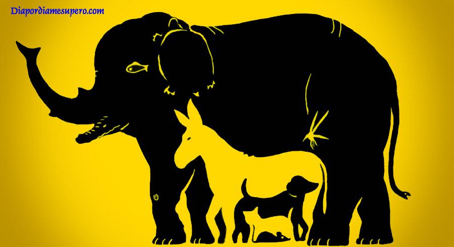 Test de inteligencia: ¿Cuántos animales ves en la imagen?