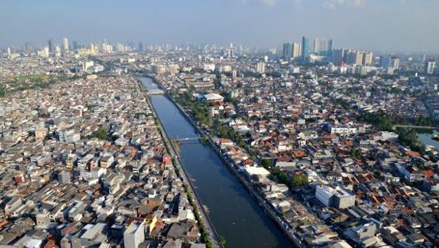 Pengaruh Kepadatan Populasi terhadap Kerusakan Lingkungan