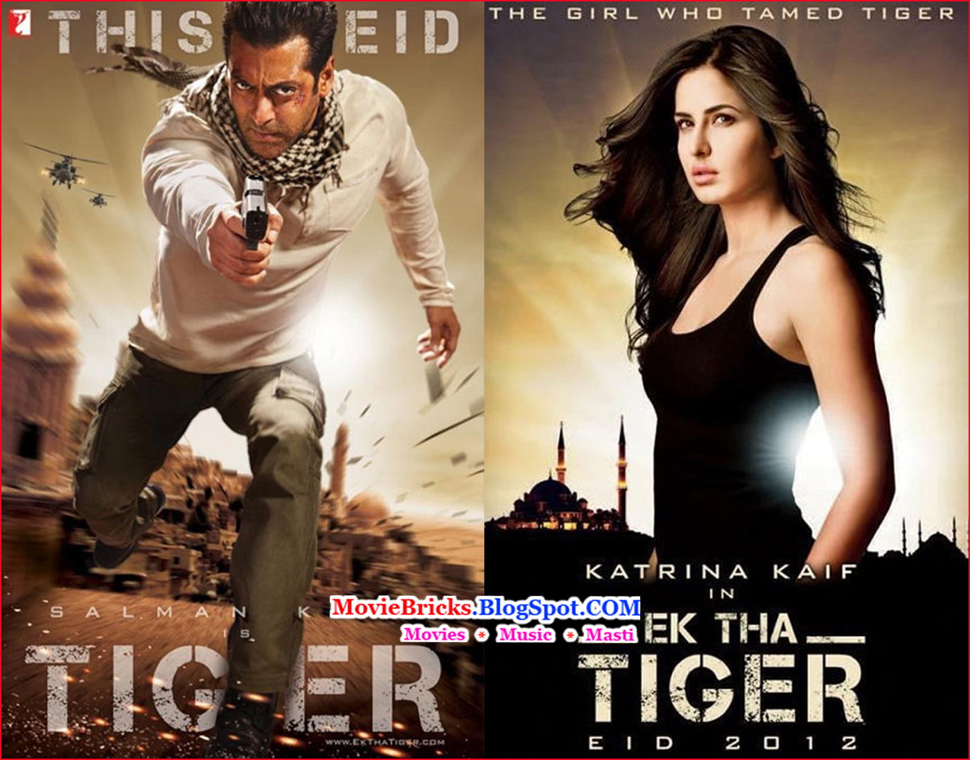Salman Khan And Katrina Kaif In Ek Tha Tiger: Bollywood Latest Movies