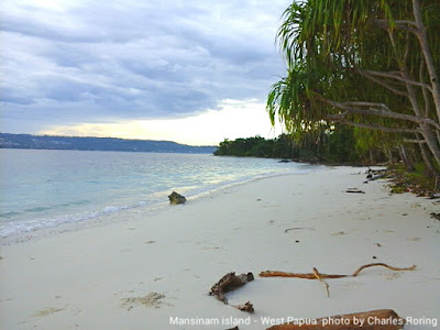 Snorkeling site in Manokwari