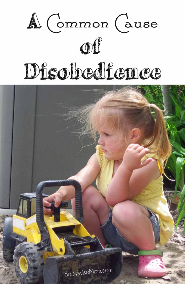 A common cause of disobedience and how to fix it