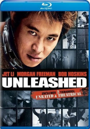 Unleashed 2005 BRRip 300MB Hindi Dual Audio 480p Watch Online Full Movie Download bolly4u