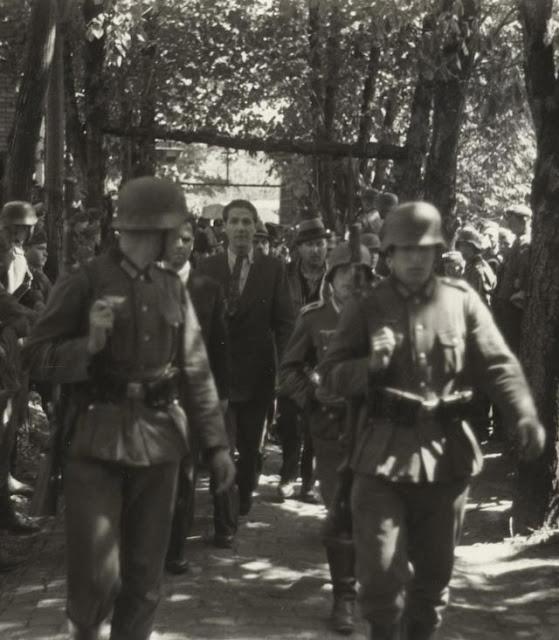 War crimes of World War II worldwartwo.filminspector.com