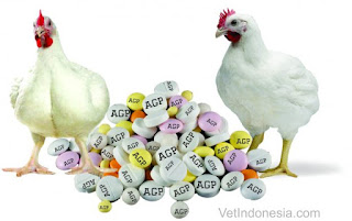 Mengapa Antibiotic Growth Promoter Dilarang?