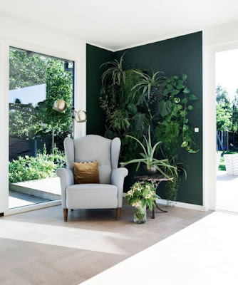 parede-pintada-de-verde-escuro-com-plantas