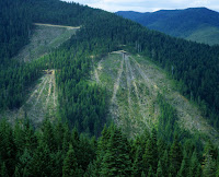 Patches of clear-cut mountain (stock image). Clear-cutting loosens up carbon stored in forest soils, increasing the chances it will return to the atmosphere as carbon dioxide and contribute to climate change, a Dartmouth College study shows. (Credit: © spiritofamerica / Fotolia) Click to Enlarge.
