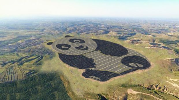 panda solar farm in China