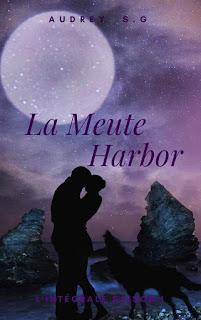 https://lesreinesdelanuit.blogspot.com/2018/06/la-meute-harbor-lintegrale-saison-1-de.html