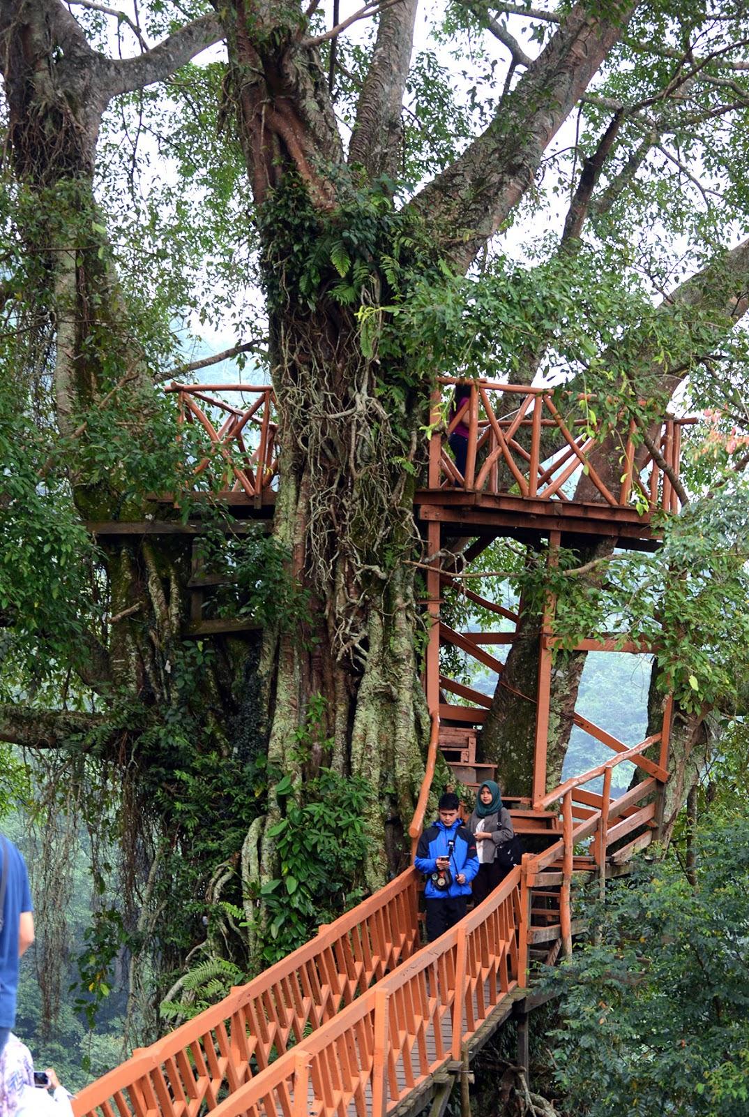 Tempat Wisata Hits Di Bogor Timur Cocok Untuk Libur Lebaran